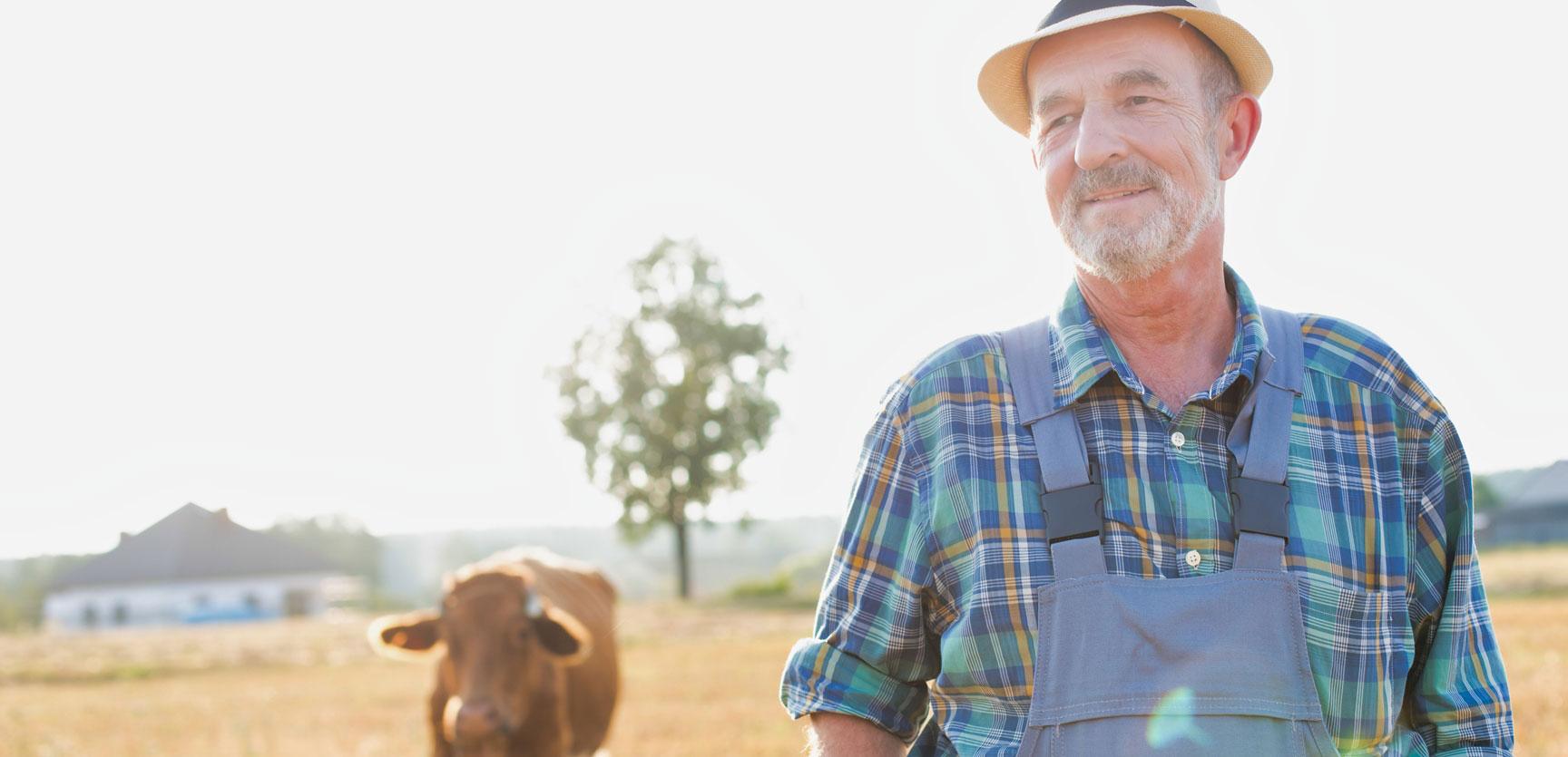 Verlängerung der Optionsfrist für umsatzsteuerpauschalierte Landwirte um ein Jahr